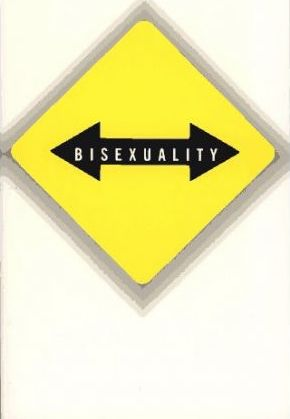 Vice Versa: Bisexuality and the Eroticism of Everyday Life by Marjorie Garber