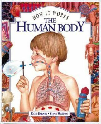 The Human Body  (How It Works) by Kate Barnes, Steve Weston