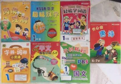 Chinese  Workbooks Set 1