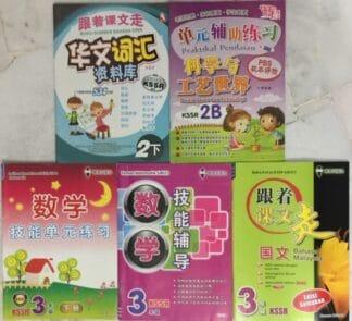 Chinese  Workbooks Set 2