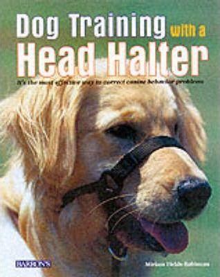 Dog Trainer with a Head Halter by Miriam Fields-Babineau