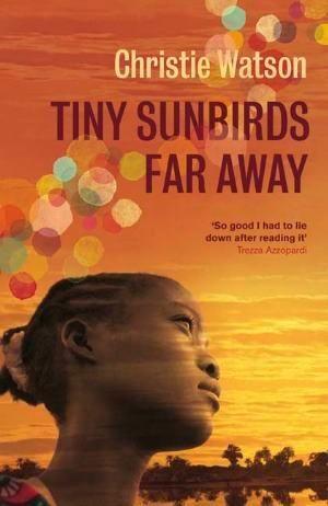 Tiny Sunbirds Far Away by Christie Watson